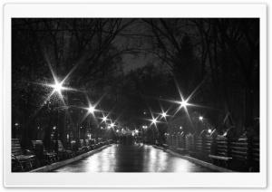 Night Black and White