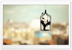 Birds Cage Photo HD