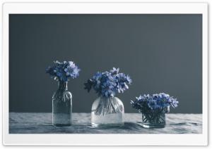 Blue Spring Flowers Still Life