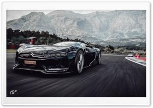 Gran Turismo game Citroen...
