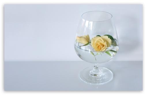 Download Glass Of Roses UltraHD Wallpaper