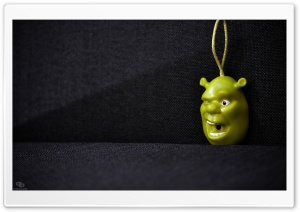 Shrek Key Holder