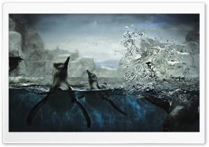 Penguins In Captivity