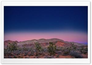 Pink Sunset, Desert