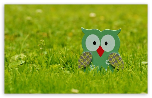 Download Garden Owl Decoration UltraHD Wallpaper