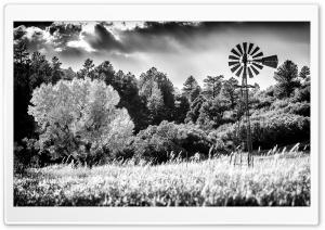 Windpump Windmill Black and...