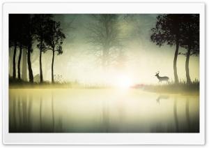 Deer Near A Lake