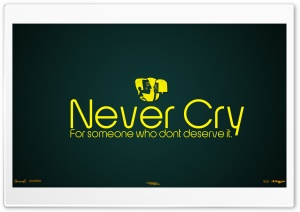 Never Cry For Someone Who...