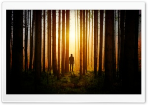 Lone Man in the Woods