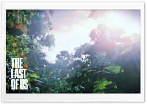 The Last Of Us Scenery