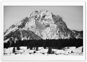 Mt Moran Black and White