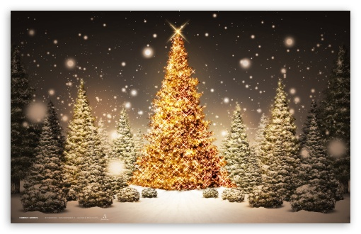 Download New Year Forest UltraHD Wallpaper