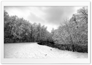 Forest River, Winter