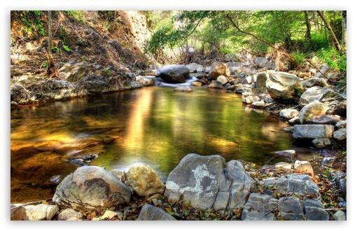 Download HDR Forest Creek UltraHD Wallpaper