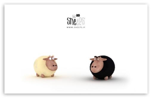 Download Black Sheep Vs White Sheep UltraHD Wallpaper