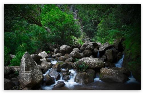 Download Rocky Forest Creek UltraHD Wallpaper