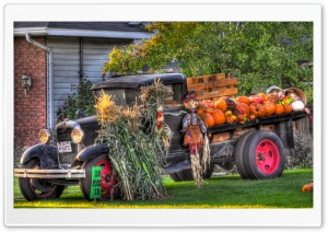 The Funky Pumpkin Truck