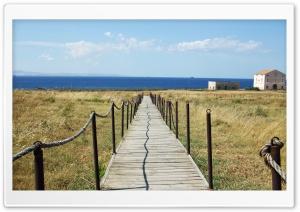 Bridge To Sea