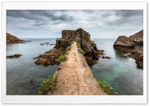 Fort, Berlenga Grande Island,...
