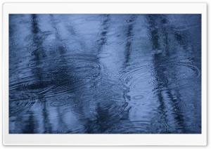 Fall Rain Reflection