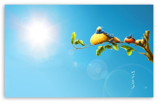 Download Funny Birds UltraHD Wallpaper