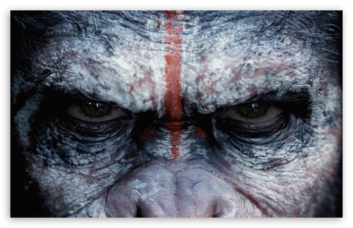 Download Dawn of the Planet of the Apes Caesar UltraHD Wallpaper