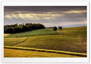 Countryside Field