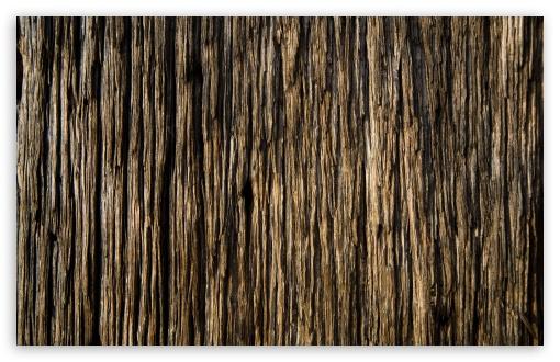 Download Wood UltraHD Wallpaper