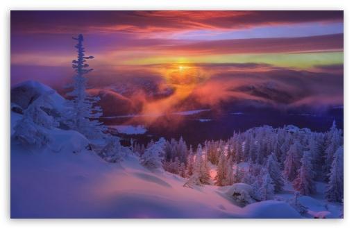 Download Frozen Winter Landscape UltraHD Wallpaper