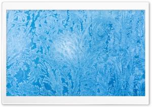Frozen Ice Flowers on Window...