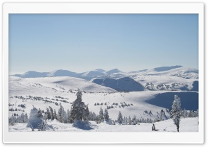 Backcountry of Powder King...