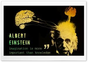 Einstein Saying