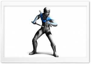 Nightwing - Batman Arkham City