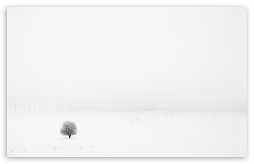 Download Winter Alone UltraHD Wallpaper