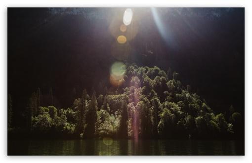 Download Sunshine, Forest Trees, Lake UltraHD Wallpaper