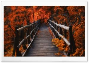 Autumn, Hike
