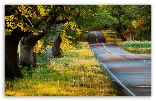 Download Beautiful Road UltraHD Wallpaper