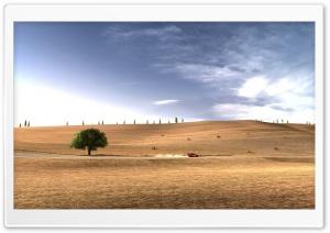 Citroen C4 WRC Desert Rally