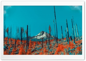 Post Apocalyptic Landscape...
