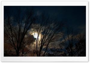 Nature Landscape Sun And Sky 45