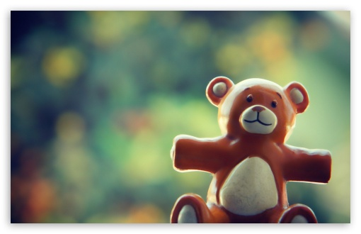 Download Dear Bear UltraHD Wallpaper