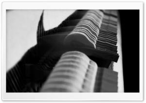 Piano Hammers Close-Up