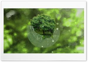 Tree Sphere