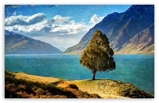 Download Tree By The Lake UltraHD Wallpaper