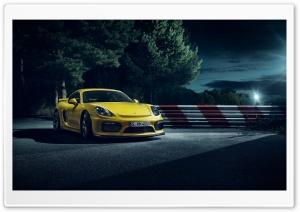 2015 Porsche Cayman GT4...