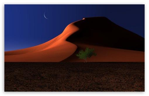 Download Night In The Desert UltraHD Wallpaper