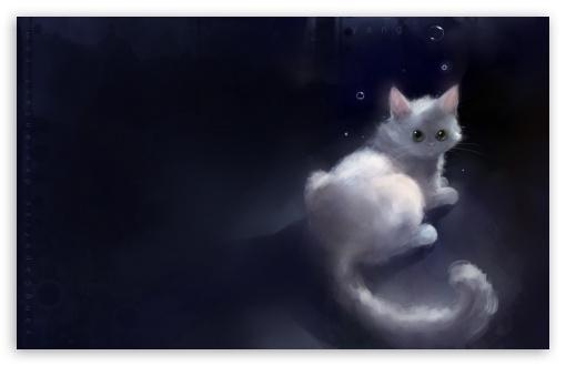 Download Yang Cat UltraHD Wallpaper