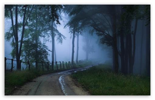 Download Misty Road UltraHD Wallpaper