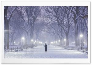 Central Park, New York City,...