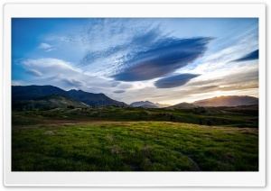 The Fields of the Queenstown...